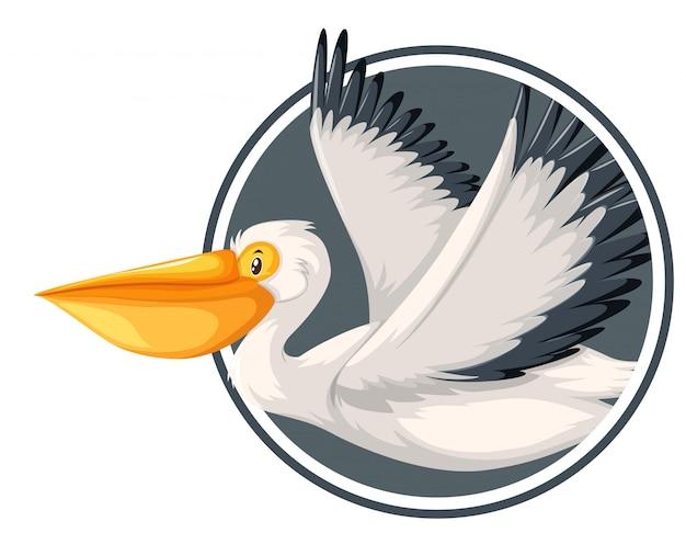 Пеликан летит в круг шаблон