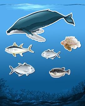 多くの魚の水中テーマ
