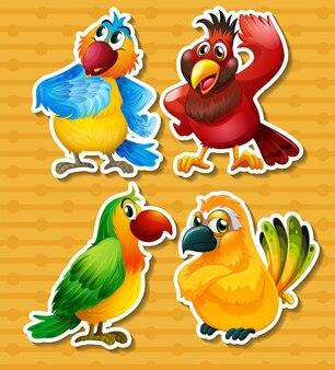 Четыре разных вида птиц на желтом фоне