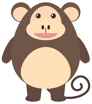 幸せそうな顔を持つ茶色の猿
