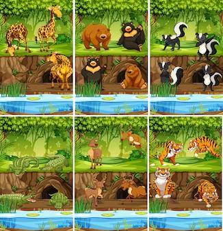 ジャングルの中で動物の大規模なセット