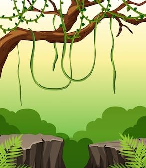 自然の崖の風景