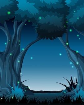 暗い夜の森の風景