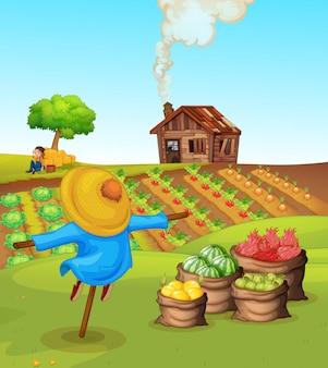 Простой сельхозугодий