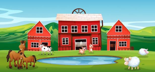 農地の農場の動物