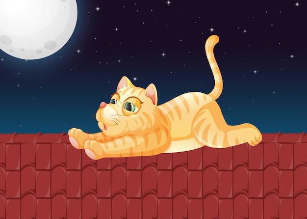 Ленивый кот на крыше
