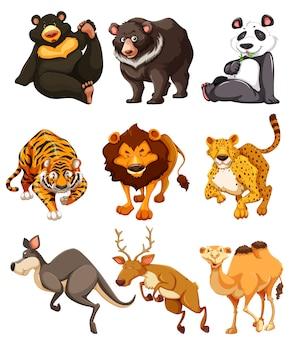 野生動物キャラクターのセット