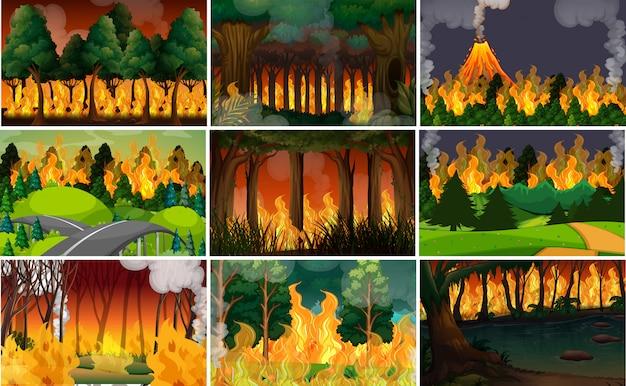 野生の火の背景のセット