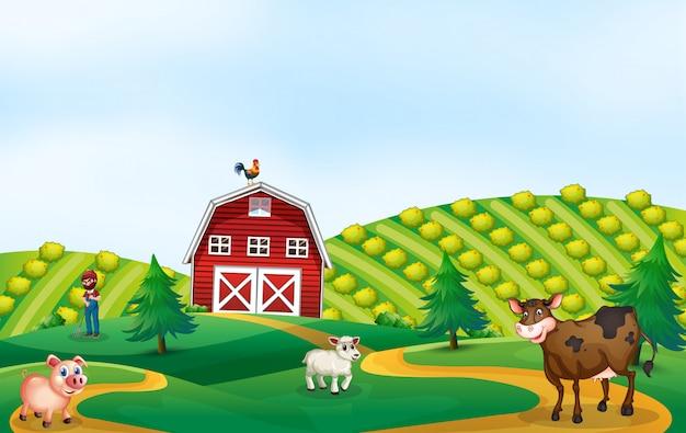 自然の農地風景