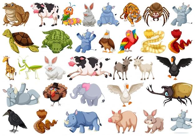 Набор животных символов