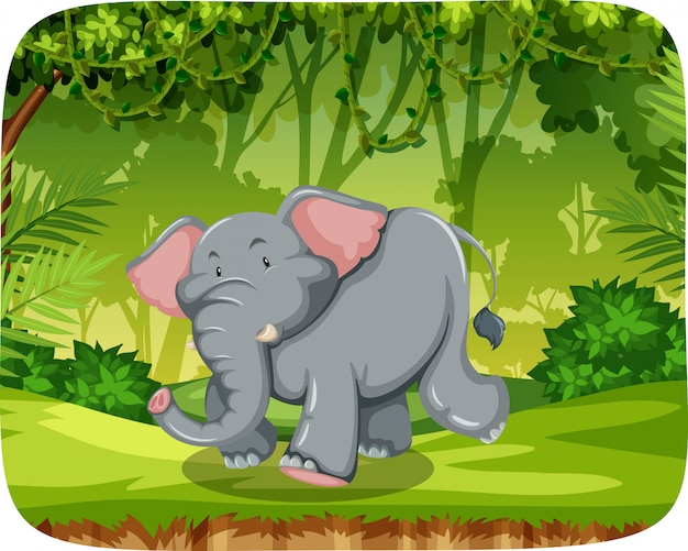 Милый слон в природе сцены
