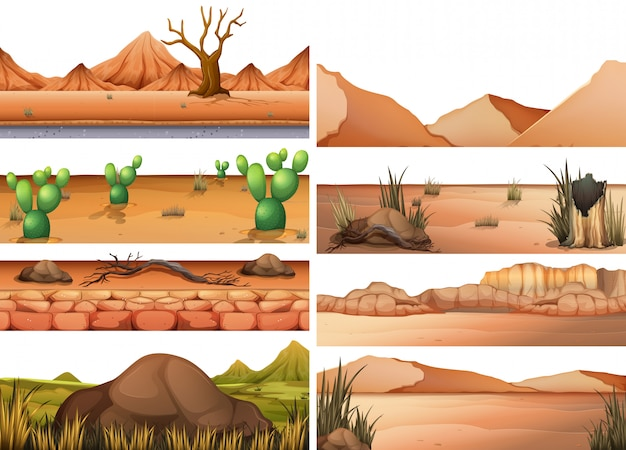 乾燥地のセット