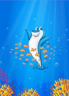 Акула рыба