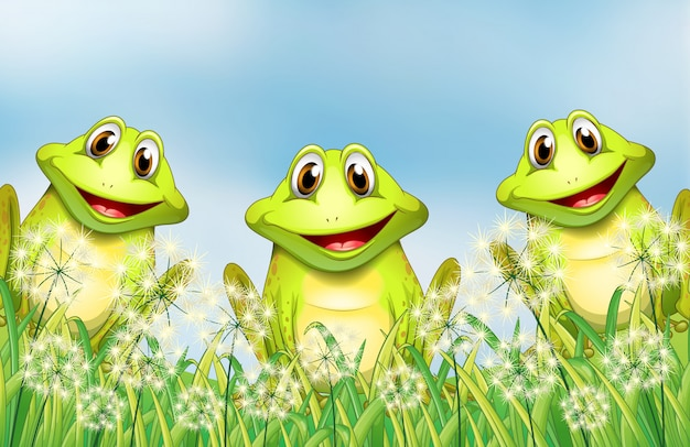 Три лягушки в саду