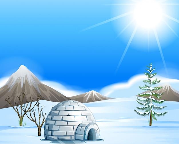 Иглу на северном полюсе