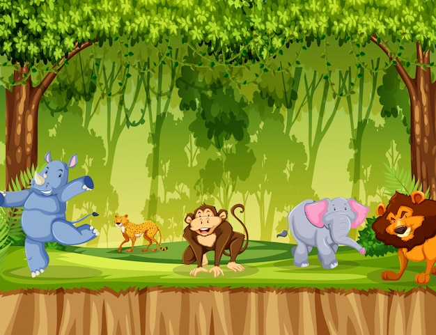 森の中の野生動物
