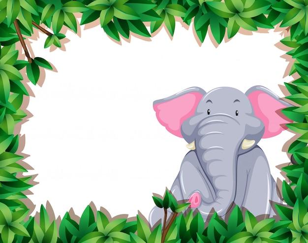 Слон в кадре природы