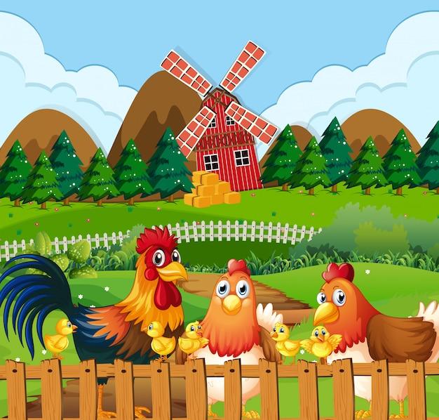 農地で鶏の家族