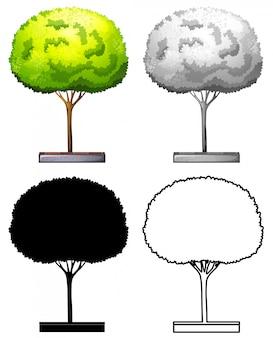 Набор из дерева дизайна