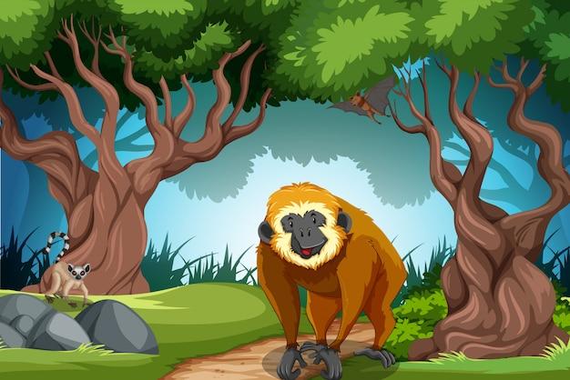 Обезьяна в диком лесу