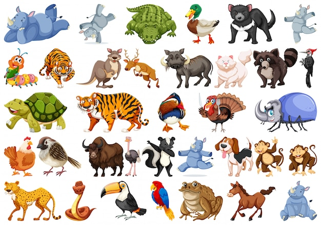Набор животных наборов
