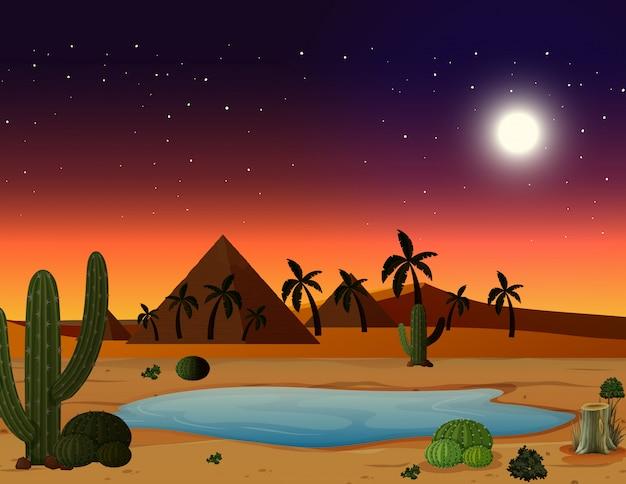 Сцена пустыни ночью