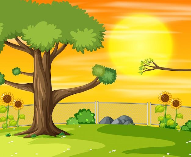 公園のシーンの夕日