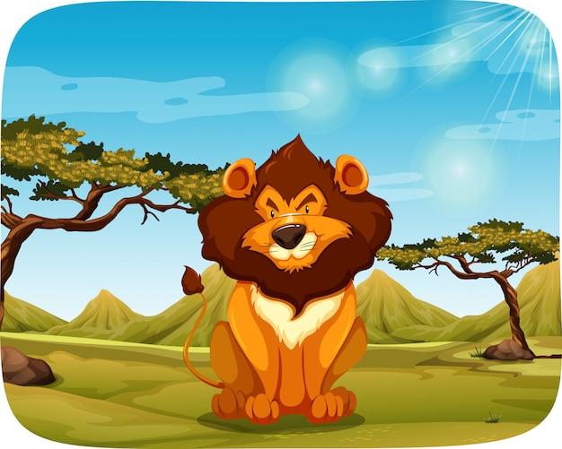 自然の中のライオン