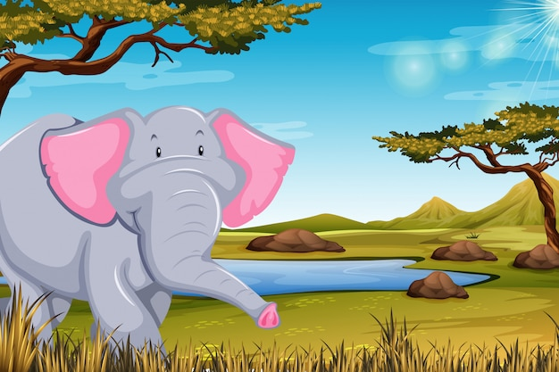 アフリカのシーンで象