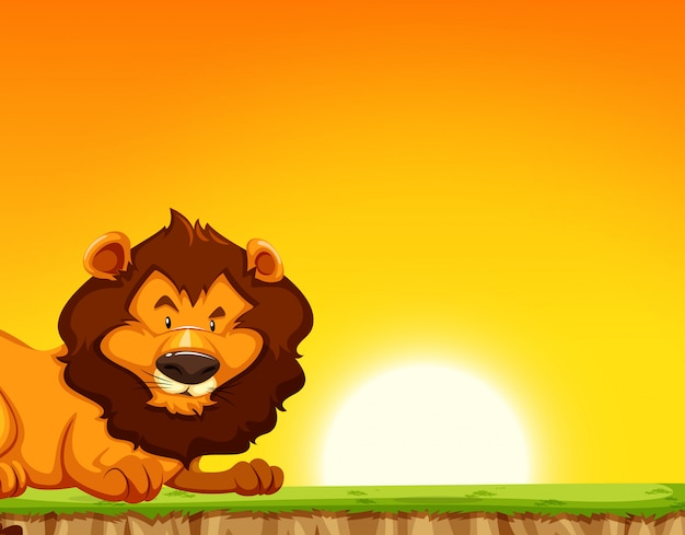 夕日を背景にライオン