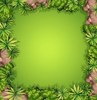 Воздушный вид на сад