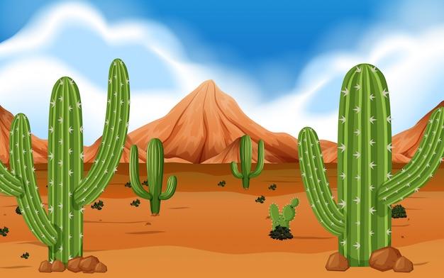 山とサボテンの砂漠