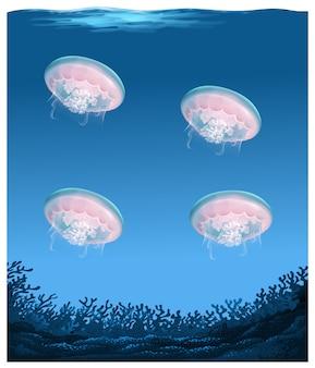 深海の下のクラゲ