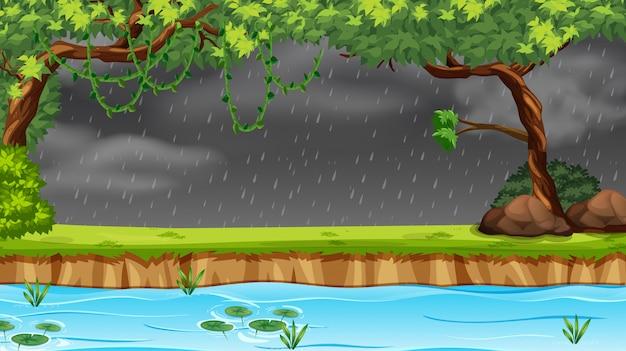森の中で雨が降っています。