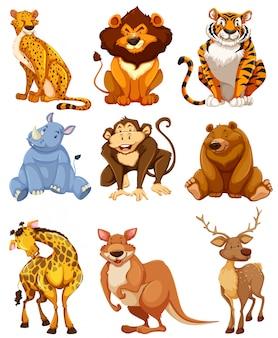 Набор символов дикого животного