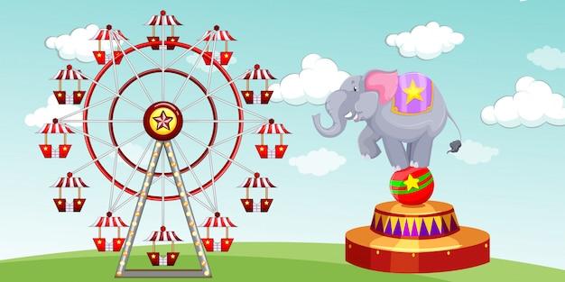 Шоу слонов и колесо обозрения в парке развлечений