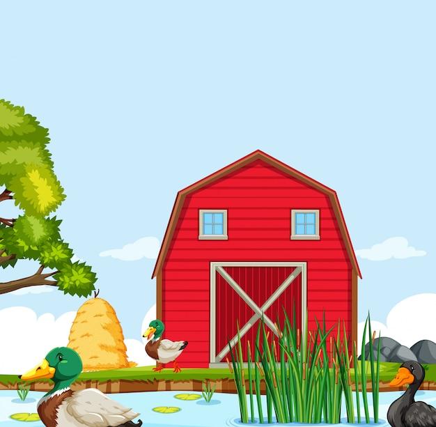 Сельский дом фермы пейзаж