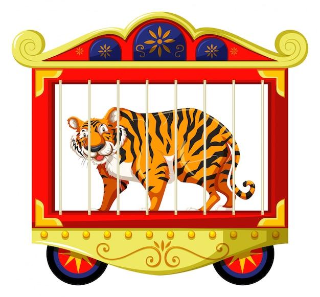 サーカスの檻の中の野生のトラ