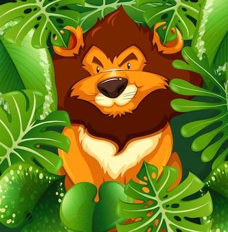 緑の茂みの中の野生のライオン