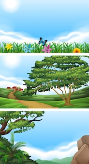 Три сцены с полем и холмами