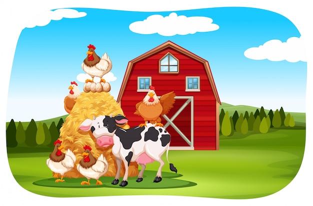 フィールドの農場の動物