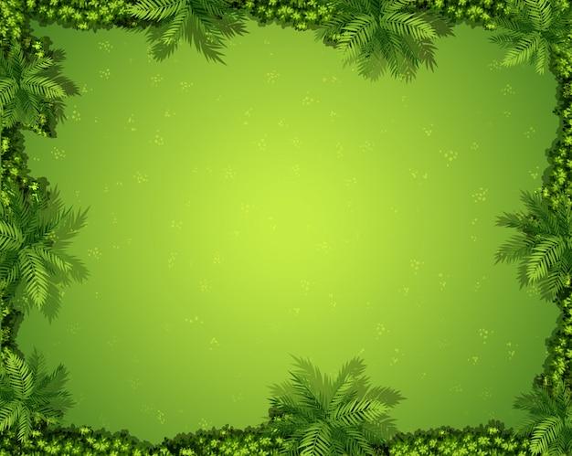 Вид с воздуха на сад