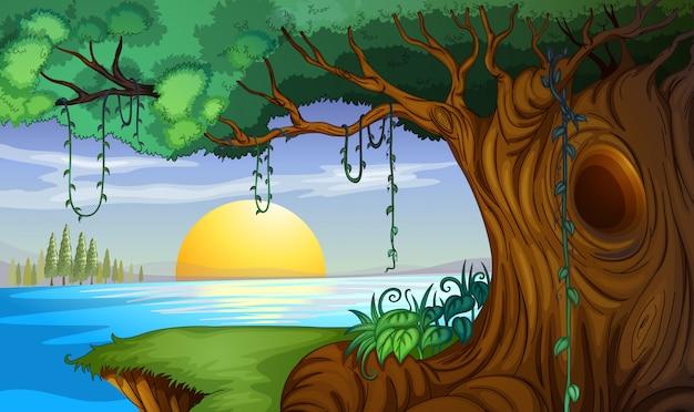湖の背景で夕日とのシーン