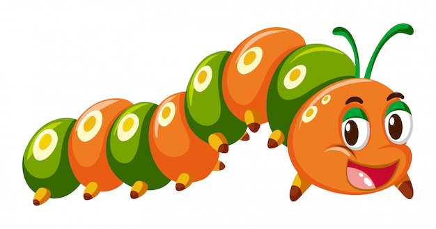 オレンジ色と緑色の毛虫