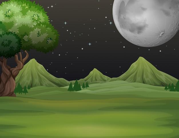 夜の時間の背景でグリーンフィールド