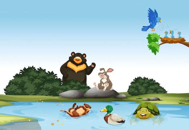 Животные в зеленом поле