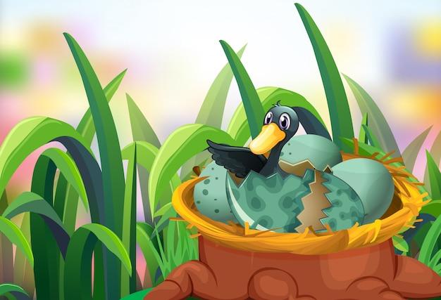 卵を孵化アヒルの庭のシーン
