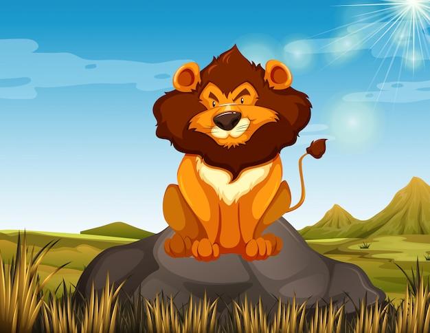 石の上に座っている野生のライオン