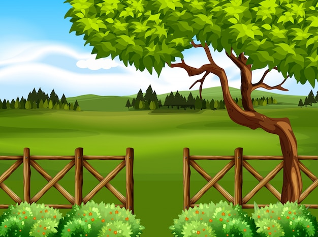 Природа сцена с деревом и полем