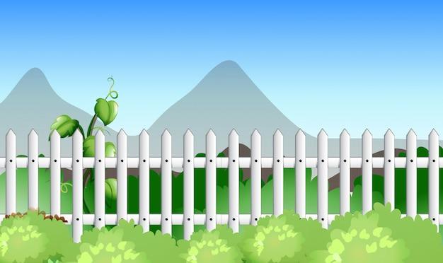 フェンスと庭のある風景